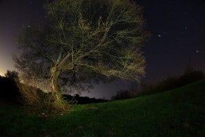 night photography tips from silvio