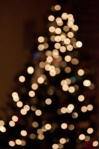 Defocused Christmas Tree picture