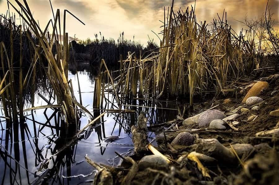 Landscape Photo - by Dustin Olsen