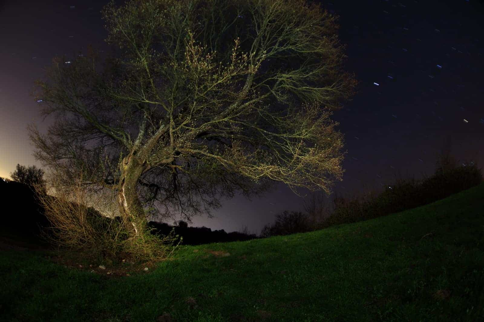 A Beginner S Guide To Night Photography