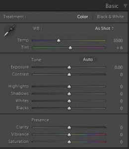 Lightroom basic panel screenshot