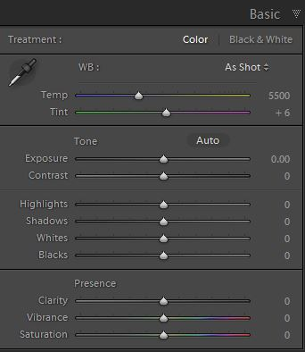 Lightroom basic panel screenshot