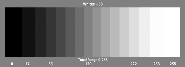 whites50