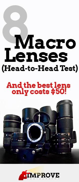8 Best Macro Lenses: Head-to-Head Comparison – Improve
