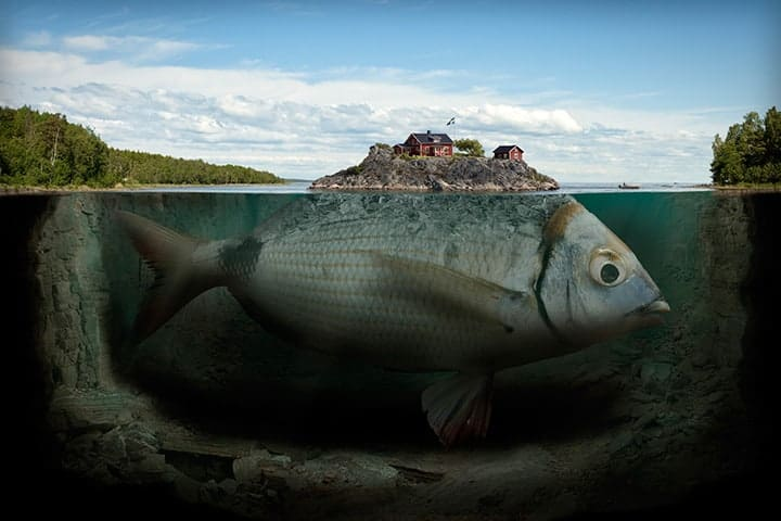 Photo by Erik Johansson