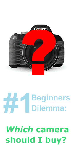 Beginner\'s Dilemma #1: Choosing First Camera