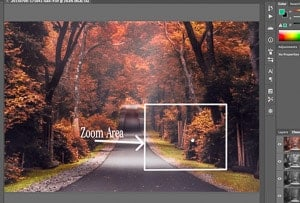 While holding the H key, click and drag your cursor around the image and the area in the box will be zoomed back to previous zoom level when you release the mouse.