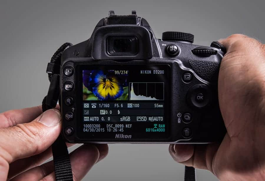 An entry level DSLR (Such as this Nikon D3200) has features and specs that just 6-7 years ago would have seemed amazing. You can create amazing images with what you have.
