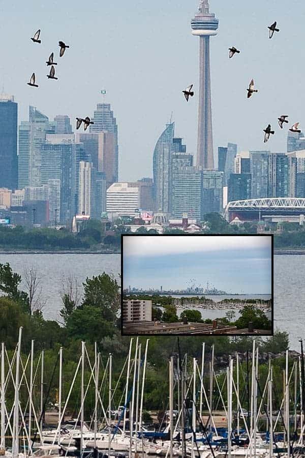 Toronto-100%-crop