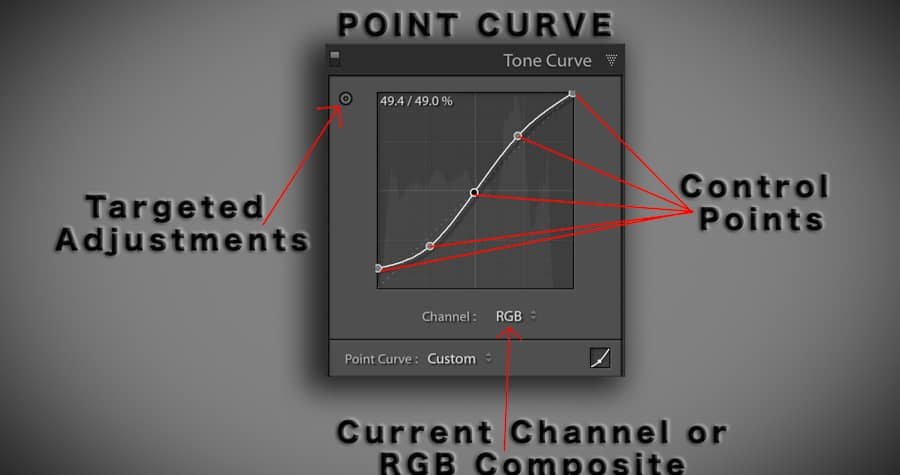 The default curve you see when opening the Tone Curve adjustment panel.