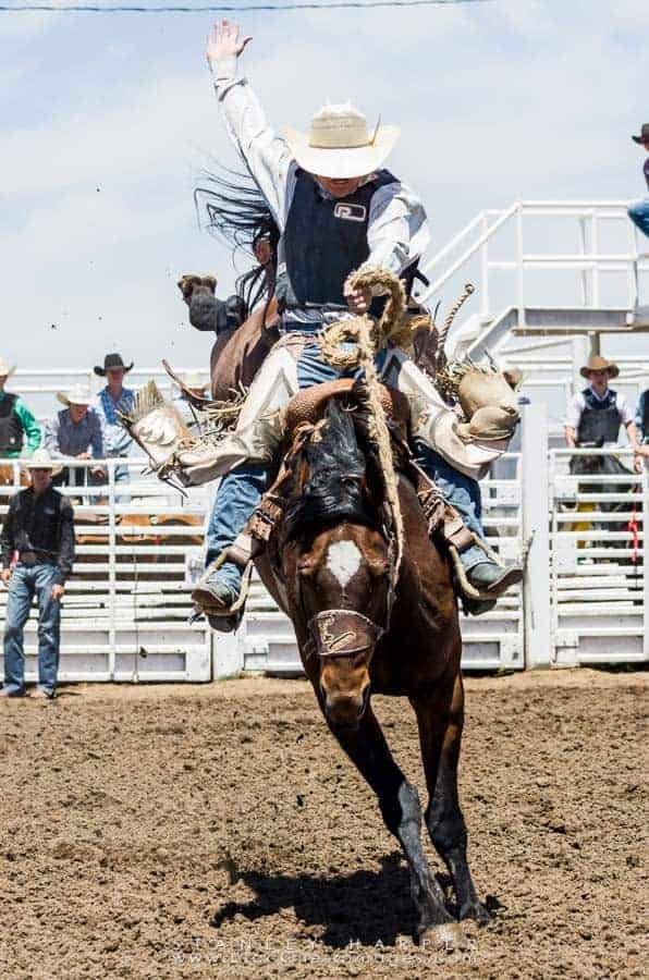 7 Tips For Rodeo Photography