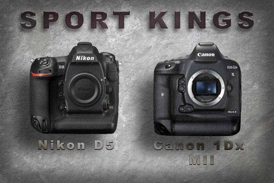 You don't need the best equipment to shoot sports like these two brand new beauties but having a camera body that can produce good images at higher ISO settings is a MUST!