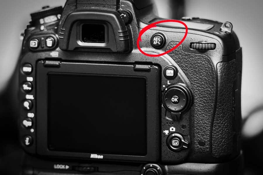 Using the AE-L/AF-L button on the rear of camera can be very helpful for many shooting situations. You may choose to shoot this was all the time - like I do!
