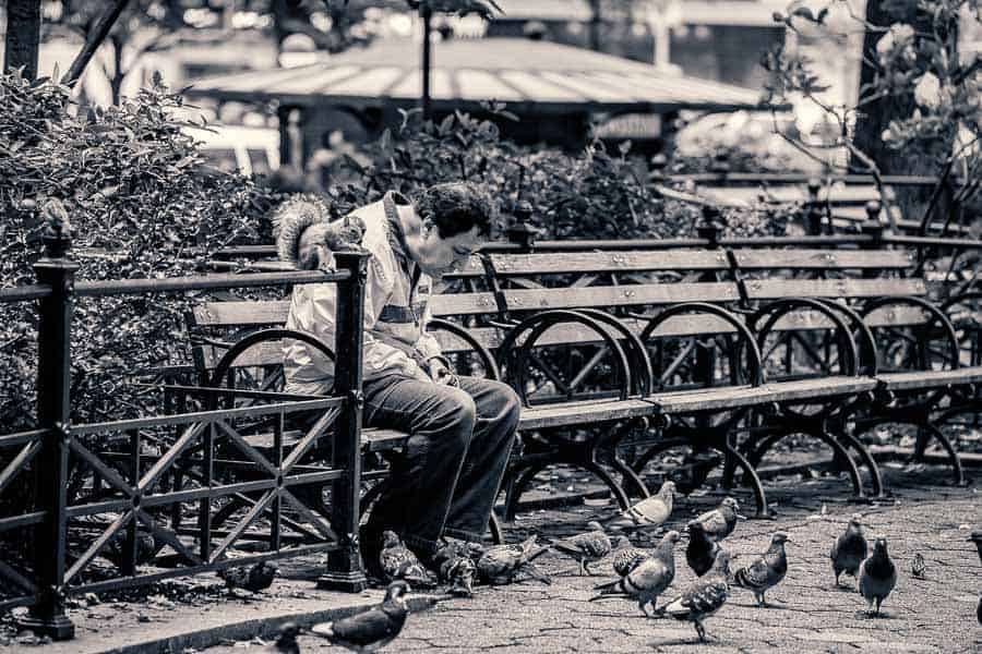 Feeding the birds at Union Square. Photo by author.