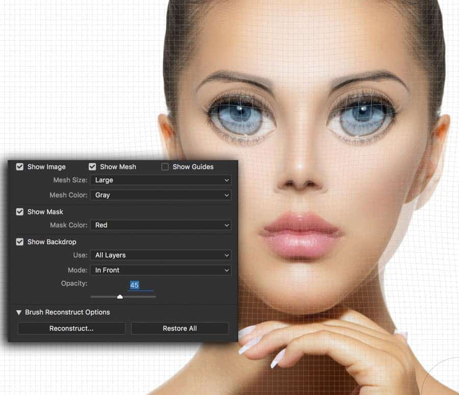 Photoshop Liquify Filter - Tips and Tricks - Improve ...