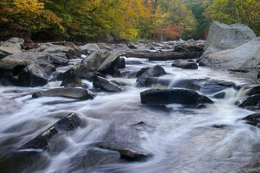 Boulders or Rapids section of Rock Creek Park