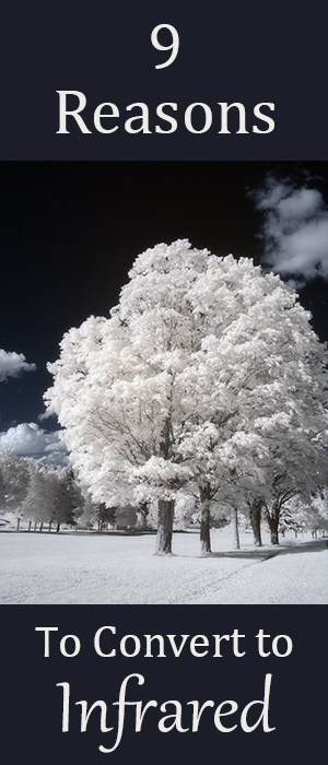 Don't Sell Your Old Camera! 9 Reasons To Convert To Infrared