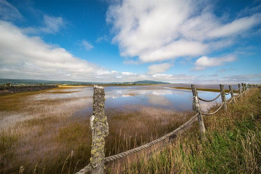 Photo of the Shepody Salt Marsh in New Brunswick, created by Tracy Munson, using the Laowa 12 mm Zero D lens.