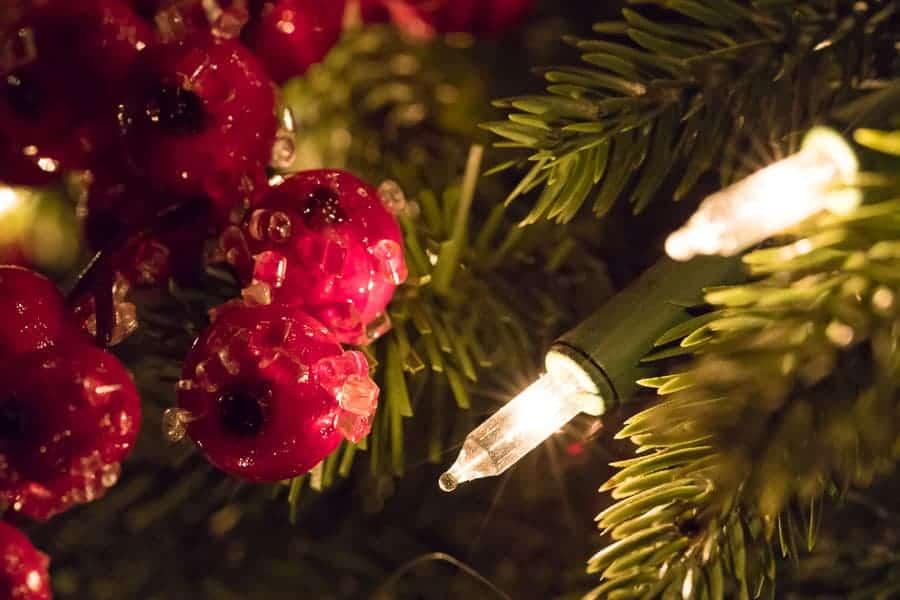 How to Photograph Christmas Lights Like A Pro - How To Photograph Christmas Lights Like A Pro Improve Photography