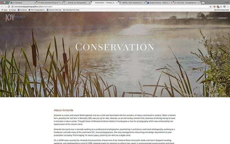 Amanda Joy Mason's website