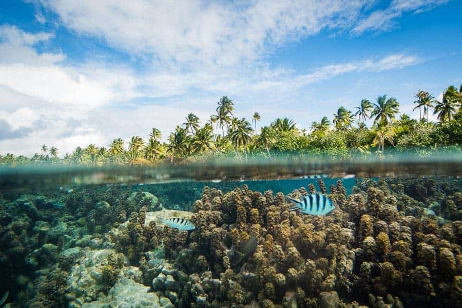 Photographers Guide to French Polynesia, the Tahitian Islands - Improve  Photography