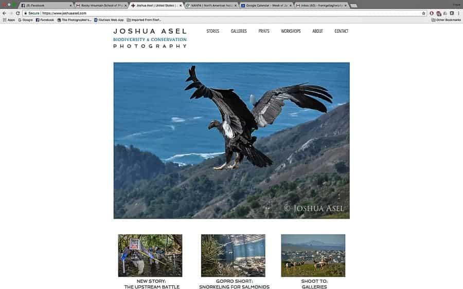 Joshua Asel's website