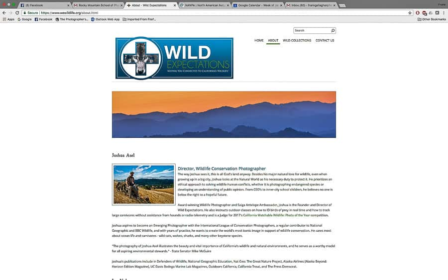 WEWildlife website