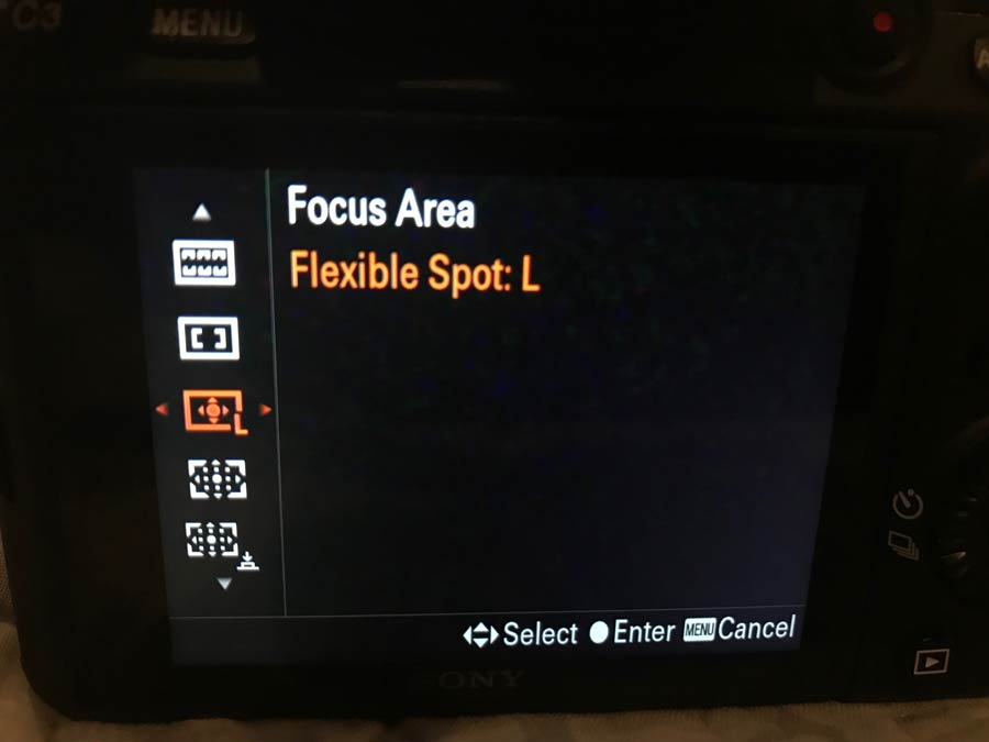 Sony Flexible spot