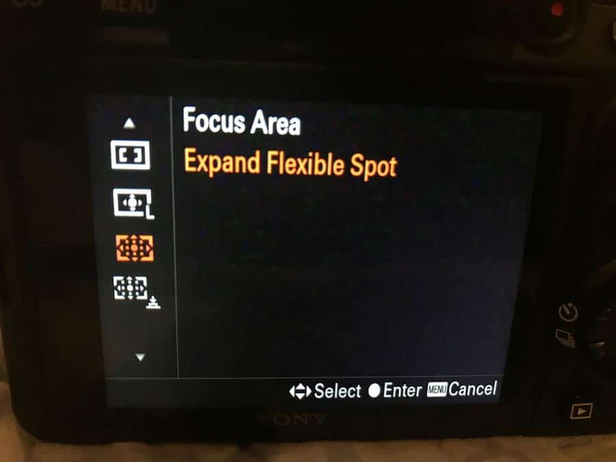 Understanding Sony's Autofocus Settings – Improve Photography