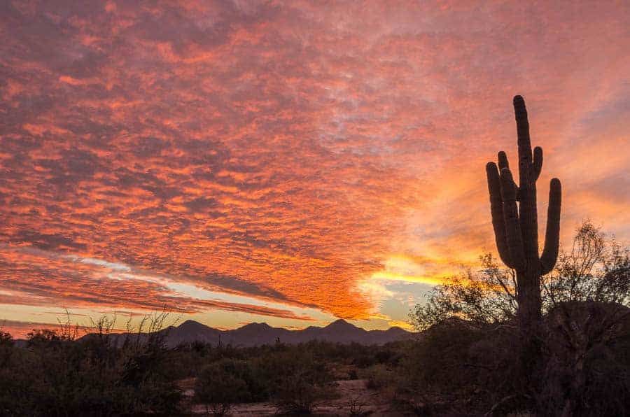 Sunset, McDowell Sonoran Preserve outside Scottsdale, AZ.