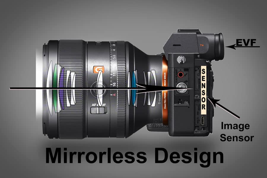 Mirrorless Vs DSLR – Mirrorless Is The Future – Improve Photography