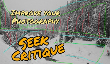 To Improve Your Photography – Seek Critique!