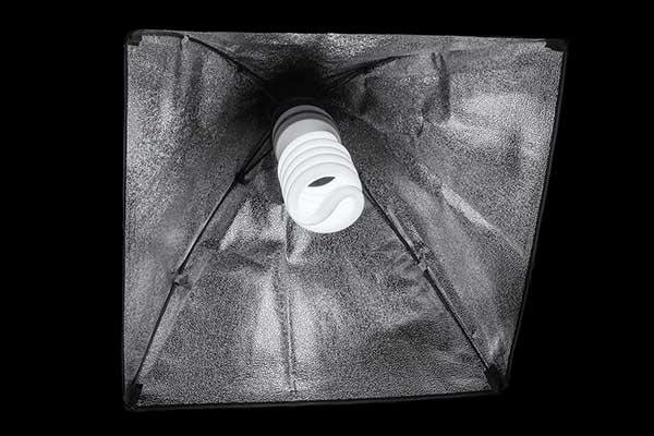 Best lightbulb for photography